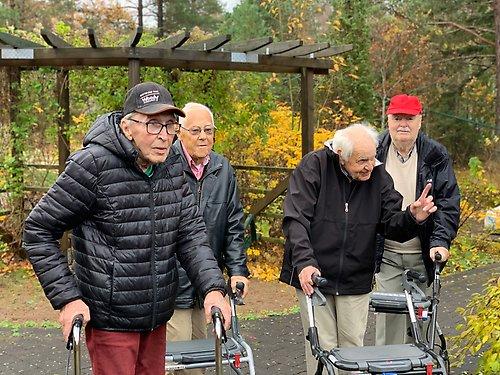 sotenäs mötesplatser för äldre